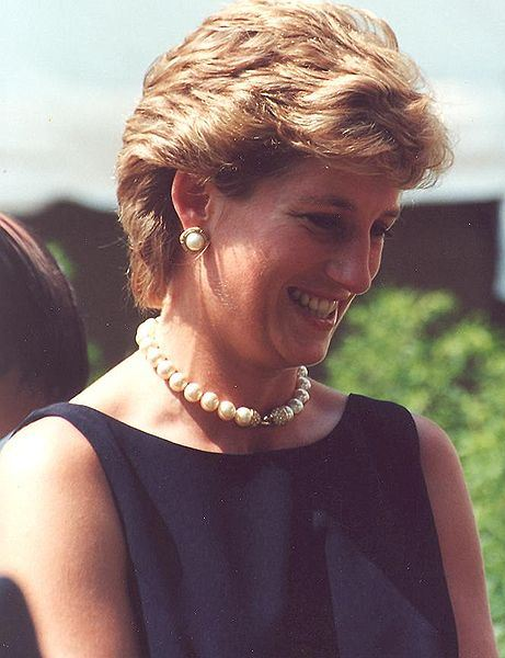Many still think Princess Diana's death was no accident