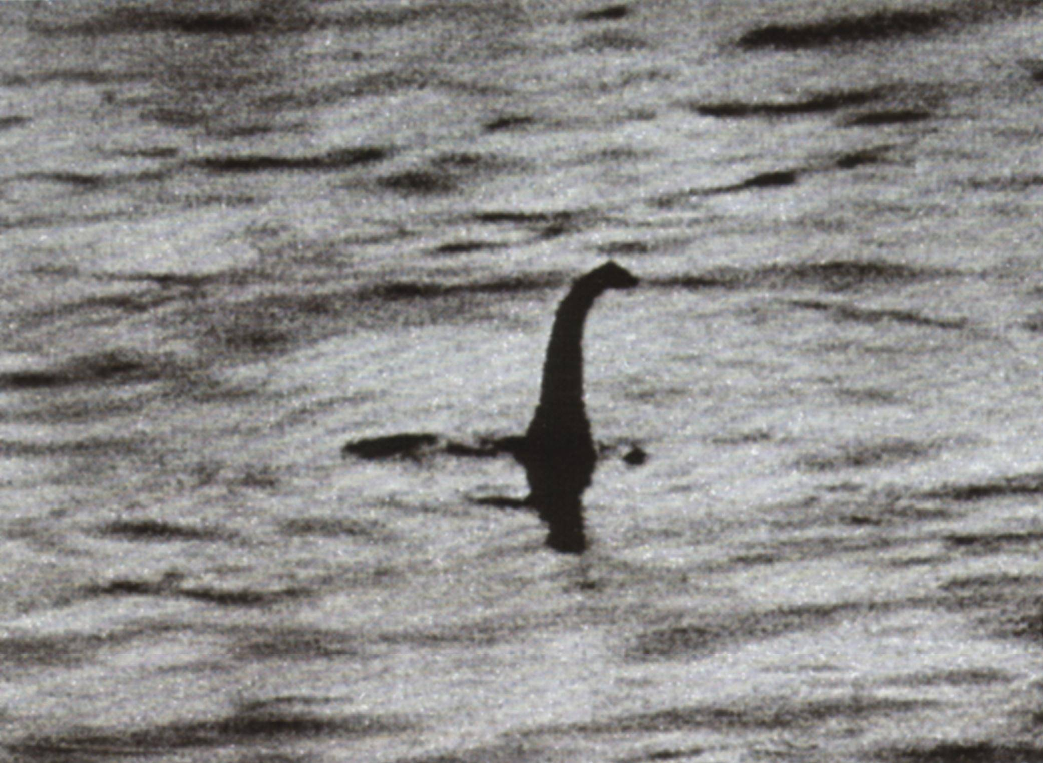 Loch Ness Monster Sightings 2014 The surgeons photograph