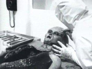 Alien Autopsy 4